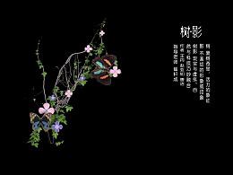 南艺2016年传媒学院数媒专业毕业展户外虚拟影像《树∙影》系列一