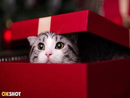 叮咚,您的圣诞礼物到货啦