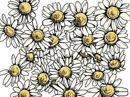 手绘线描花