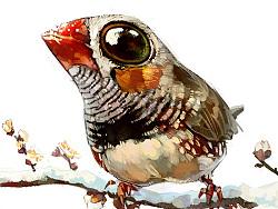 【教程 by 雪娃娃】雪枝上的小鸟