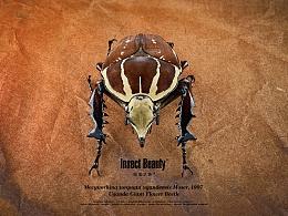 昆虫之美™乌干达花金龟
