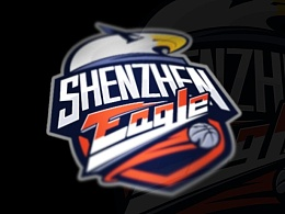 shenzhen basketball club logo
