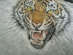 工笔画老虎