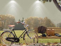 品牌服饰秋季橱窗展示设计/枫树道具/树桩橱窗道具