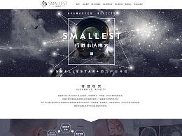 网页设计:Smallest 官网首页