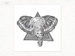 《Animal》系列钢笔插画