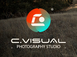 C.Visual Logo Design...
