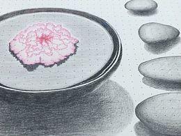 碗中芙蓉与石头