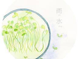节气雨水--食豆苗