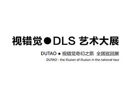 视错觉.DLS艺术大展