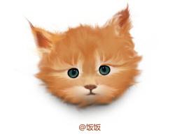 广州UI圈课间练习———鼠绘,小猫咪~~~一枚~~~