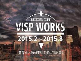 VISP WORKS 2015上半年总结