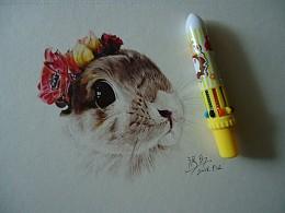 彩色圆珠笔   仓鼠