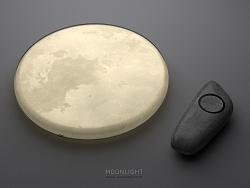 月光 MOONLIGHT