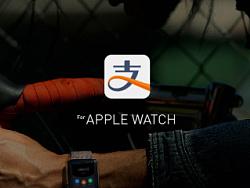 支付宝钱包 For APPLE WATCH by 阁楼妖怪
