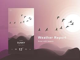 Weather Report APP