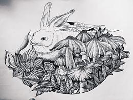 针管笔插画 黑白