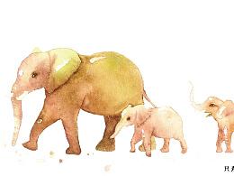 水彩:大象,记得回家