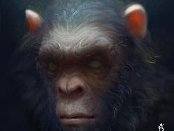 2017-1-6猩猩
