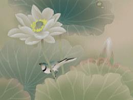 电脑手绘国画花卉花鸟