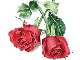 送你两朵大红花