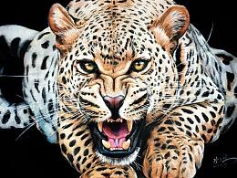 彩铅——金钱豹