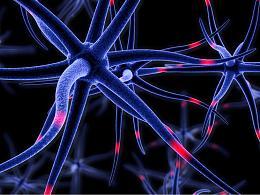 3D建模-C4D脑细胞神经特效动画