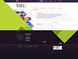 网页设计-英文网站
