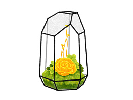 《花房》系列