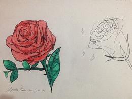 春天来了素描一张蔷薇花
