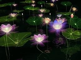 池塘荷花夜景