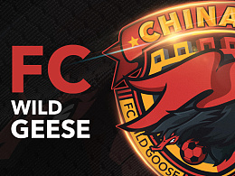 FC WILD GEESE