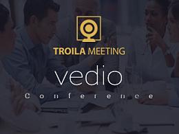 Vedio Conference 视频会议系统界面