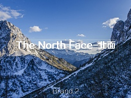箱包品牌信息调研分析——Thule,The north face