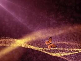 特效来袭——蝴蝶粒子案例解析全集