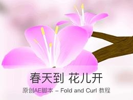 春天到,花儿开——原创AE脚本Fold and Curl介绍