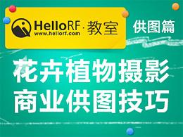 HelloRF教室——供图篇之花卉植物摄影商业供图技巧