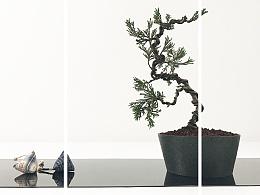 上相•五月 生活+「 PLANTS 」