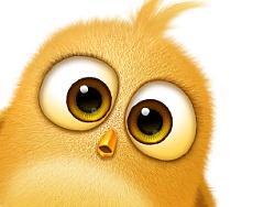 如何画出一只萌萌哒小鸟