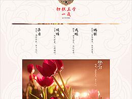 【2015·年中大促品牌页】 × 张栋夫