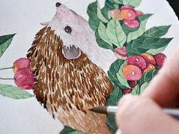 【小刺猬与红果子】水彩绘画过程