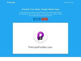 Principle : 你必须试一试的原型设计工具