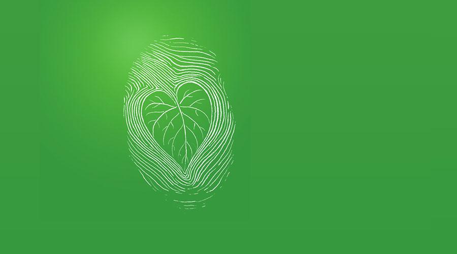 背景 壁纸 绿色 绿叶 设计 矢量 矢量图 树叶 素材 植物 桌面 900_500