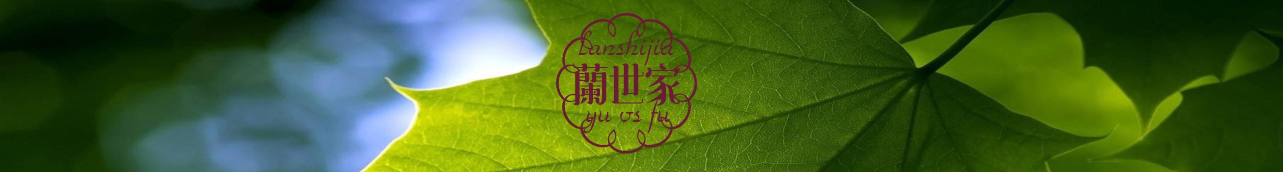 背景 壁纸 绿色 绿叶 树叶 植物 桌面 2560_344