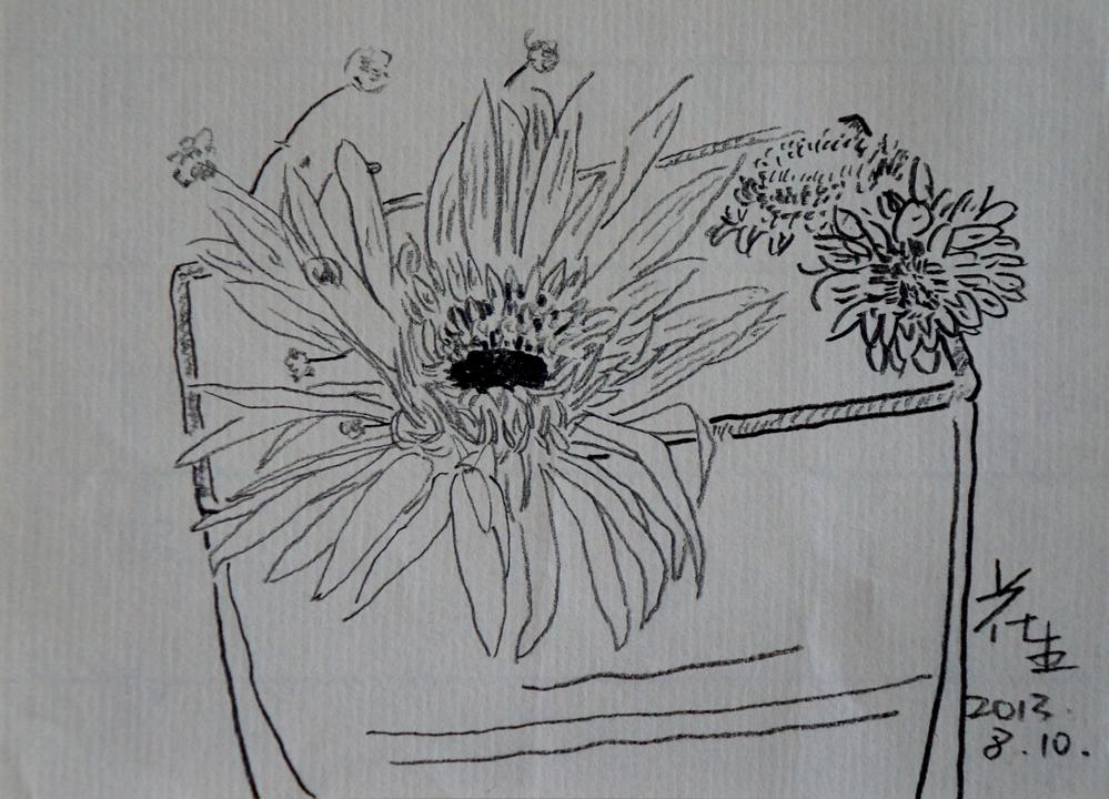 花生相关的手绘图