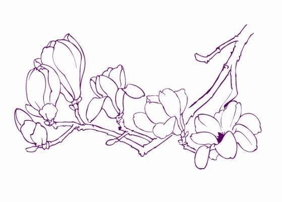 简笔画 设计 矢量 矢量图 手绘 素材 线稿 559_400