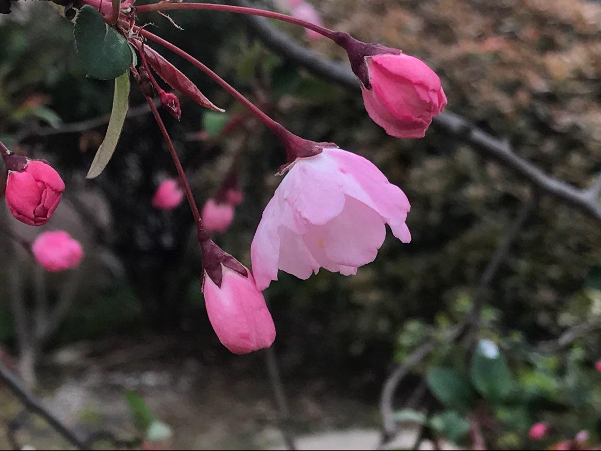 wuxiaoyuan16888