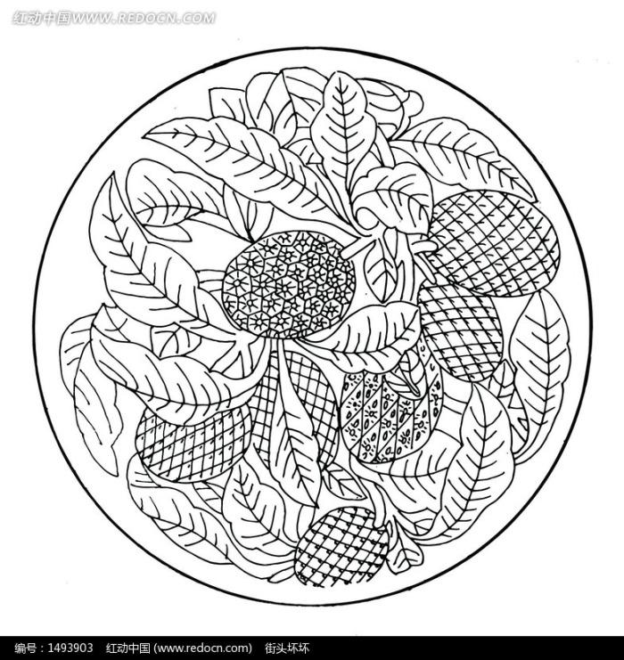 手绘菠萝和叶蔓的圆形矢量图