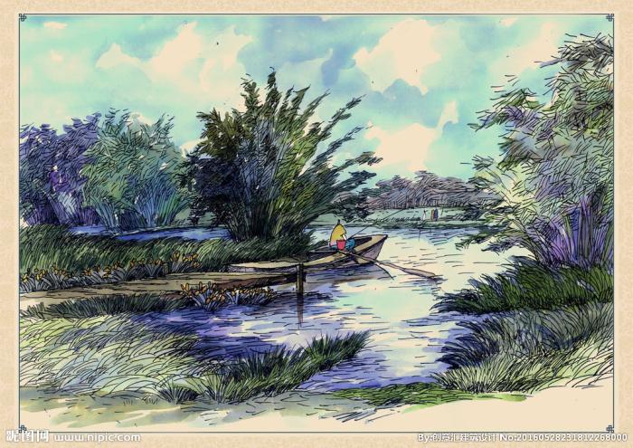 湿地沼泽是什么?有什么功能?如何保护湿地